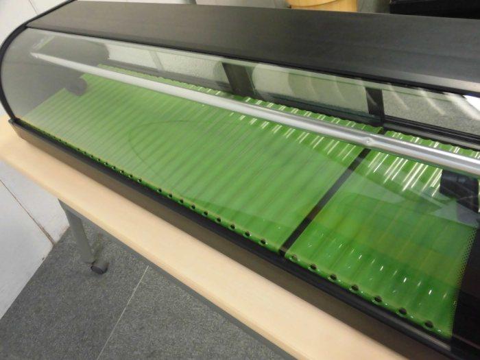 ホシザキ冷蔵ネタケースHNC-150B-R-B詳細画像3